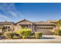 View 11171 Prado Del Rey Ln Las Vegas NV