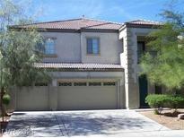 View 6709 Courtney Michelle St Las Vegas NV